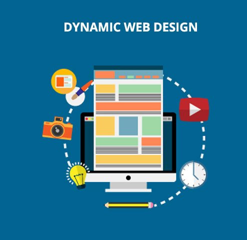Dynamic Website Developers in Thrissur - Big Brain Creation